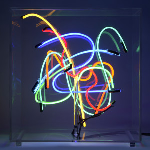 15. LIGHTLAND 120076, 2012, 50 x 50 x 50 cm. vetro, argon, materiali elettrici, plexiglas